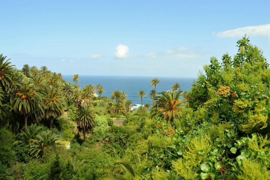 Landschaftsschutzgebiet Rambla de Castro