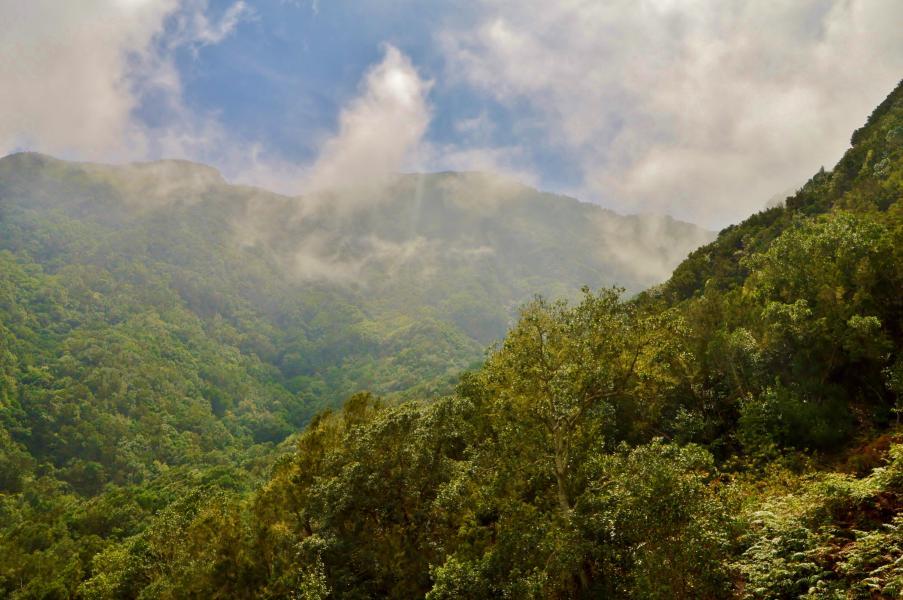 Im schroffen, wilden Bergland des Anaga Gebirges.
