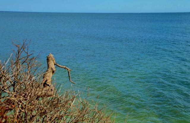 Steilküste Olhos de Agua